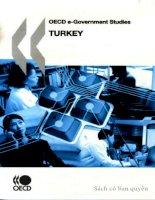 oecd e government studies turkey 2007 pdf