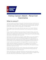 Kidney Cancer (Adult) - Renal Cell Carcinoma doc