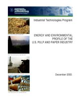ENERGY AND ENVIRONMENTAL PROFILE OF THE U.S. PULP AND PAPER INDUSTRY pdf