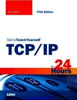 Sams Teach Yourself TCP/IP 24 Hours pdf