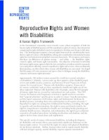 Reproductive Rights and Women with Disabilities pptx
