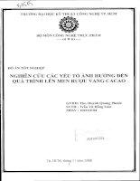 LUẬN VĂN CÔNG NGHỆ THỰC PHẨM NGHIÊN CỨU CÁC YẾU TỐ ẢNH HƯỞNG QUÁ TRÌNH LÊN MEN RƯỢU VANG CACAO