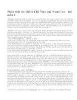 Phân tích tác phẩm Chí Phèo của Nam Cao – bài mẫu 1