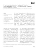 Báo cáo khoa học: N-terminal deletion of the c subunit affects the stabilization and activity of chloroplast ATP synthase doc
