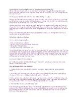 Cách viết CV xin việc và Mẫu đơn CV xin việc dành cho sinh viên pdf