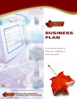 BUSINESS PLAN: A practical guide to help you develop a business plan pptx