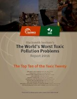 Blacksmith Institute's The World's Worst Toxic Pollution Problems potx