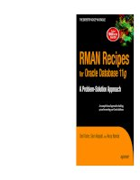 RMAN Recipes for Oracle Database 11g:A Problem-Solution Approach docx