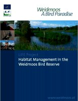 LIFE Project Habitat Management in the Weidmoos Bird Reserve docx