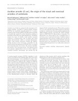 Báo cáo Y học: Ascidian arrestin (Ci-arr), the origin of the visual and nonvisual arrestins of vertebrate pdf