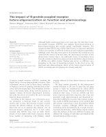 Báo cáo khoa học: The impact of G-protein-coupled receptor hetero-oligomerization on function and pharmacology pptx