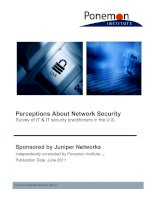 Perceptions About Network Security: Survey of IT & IT security practitioners in the U.S. pptx
