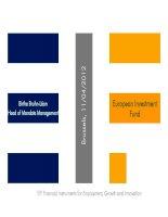 European Investment Fund - Birthe Bruhn-Léon Head of Mandate Management docx