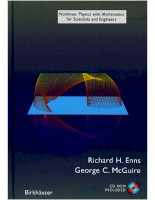 Nonlinear physics with mathematica for scientists and engineers   r  ennis, g  mcguire