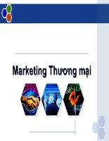 Mẫu slide powerpoint bài giảng Marketing thương mại