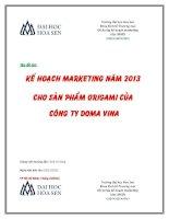 Kế hoạch marketing năm 2013 cho sản phẩm origami của công ty doma vina