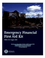 EMERGENCY FINANCIAL FIRST AID KIT potx