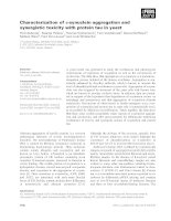 Báo cáo khoa học: Characterization of a-synuclein aggregation and synergistic toxicity with protein tau in yeast potx