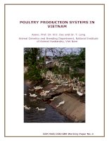 POULTRY PRODUCTION SYSTEMS IN VIETNAM pot