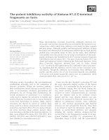 Báo cáo khoa học: The potent inhibitory activity of histone H1.2 C-terminal fragments on furin doc