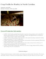 Crop Profile for Poultry in North Carolina pdf