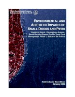 ENVIRONMENTAL AND AESTHETIC IMPACTS OF SMALL DOCKS AND PIERS pot