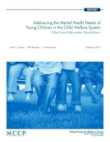 Addressing the Mental Health Needs of Young Children in the Child Welfare System pptx
