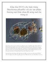 Giàu hóa HUFA cho luân trùng Brachionus plicatilis với các sản phẩm thương mại khác nhau để ương nuôi ấu trùng cá ppt