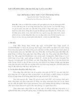ĐẶC ĐIỂM ĐỊA CHẤT THỦY VĂN TỈNH ĐẮK NÔNG pdf