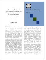 Deepening Regional Integration to Eliminate the Fragmented Goods Market in Southern Africa docx