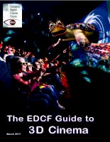 THE EDCF GUIDE TO 3D CINEMA docx