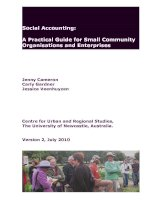 Social Accounting: A Practical Guide for Small Community Organisations and Enterprises pot