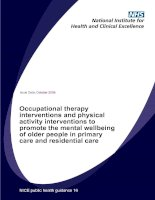 Occupational therapy interventions and physical activity interventions to promote the mental wellbeing of older people in primary care and residential care pdf