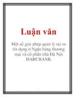 Luận văn: Một số giải pháp quản lý rủi ro tín dụng ở Ngân hàng thương mại và cổ phần nhà Hà Nội HABUBANK ppt