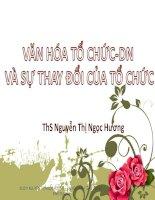 VĂN HÓA TỔ CHỨC-DN VÀ SỰ THAY ĐỔI CỦA TỔ CHỨC pot
