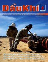Tạp chí của tập đoàn dầu khí quốc gia Việt Nam - Petrovietnam - Số 8 - 2011 pdf
