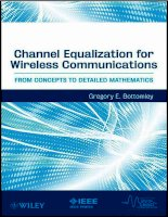 Channel Equalization for Wireless Communications: From Concepts to Detailed Mathematics doc