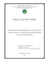 TINH SẠCH ENZYME BROMELAIN TỪ THÂN DỨA (Ananas comosus (L.) Merr.) BẰNG PHƯƠNG PHÁP SẮC KÝ TRAO ĐỔI ION docx