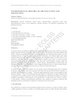 ENVIRONMENTAL HISTORY OF AIR POLLUTION AND PROTECTION doc