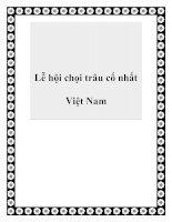 Lễ hội chọi trâu cổ nhất Việt Nam doc