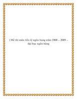 2 Đề thi môn tiền tệ ngân hang năm 2008 – 2009 doc