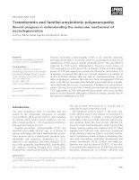 Báo cáo khoa học: Transthyretin and familial amyloidotic polyneuropathy Recent progress in understanding the molecular mechanism of neurodegeneration pdf