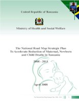 The National Road Map Strategic Plan To Accelerate Reduction of Maternal, Newborn and Child Deaths in Tanzania 2008 - 2015 potx