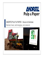 ANDRITZ PULP & PAPER – focus on biomass Market drivers, technologies, and products pptx