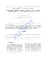 Luận văn:Khắc phục của nhà đầu tư cá nhân tại thị trường chứng khoán Việt Nam potx