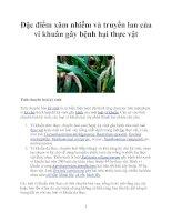 Đặc điểm xâm nhiễm và truyền lan của vi khuẩn gây bệnh hại thực vật ppt
