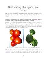 Dinh dưỡng cho người bệnh lupus docx