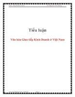 Tiểu luận: Văn hóa Giao tiếp Kinh Doanh ở Việt Nam pdf