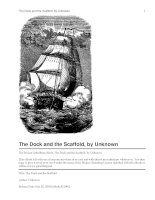 The Dock and the Scaffold ppt