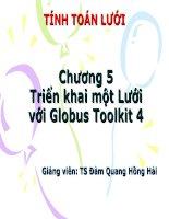 tính toán lưới - chương 5 triển khai một lưới với globus toolkit 4